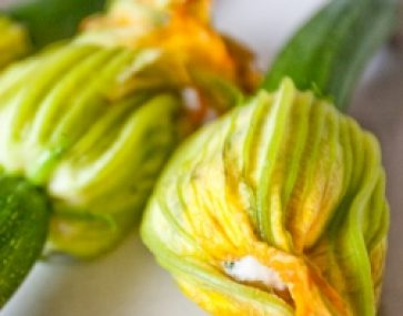 Zucchini Flowers with Chevre and Chives