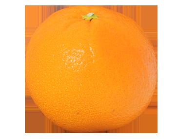 Citrus Hybrids (Tangelo..)