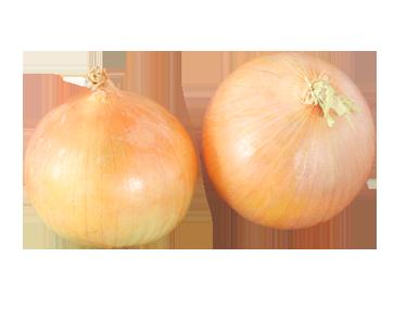 onions-shallots