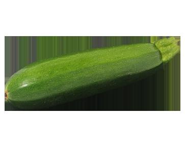 squash-and-zucchini