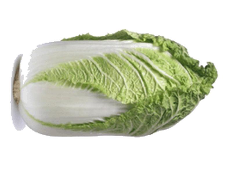 Cabbage Wombok Half Wiffens